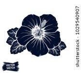 hibiscus flower. tropical plant ... | Shutterstock .eps vector #1029540907