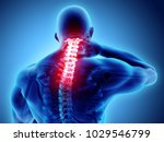 3d illustration  neck painful   ... | Shutterstock . vector #1029546799