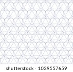 elegant hexagon based line... | Shutterstock .eps vector #1029557659