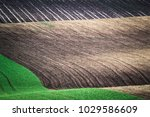 green spring field abstract eco ... | Shutterstock . vector #1029586609