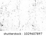 abstract background. monochrome ... | Shutterstock . vector #1029607897