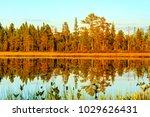 beautiful summer evening in... | Shutterstock . vector #1029626431