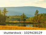 mountain lake and wild forest ... | Shutterstock . vector #1029628129