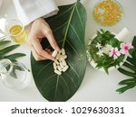 scientist or doctor making... | Shutterstock . vector #1029630331