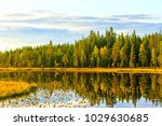 clear lake and virgin forest at ... | Shutterstock . vector #1029630685