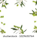 Small photo of Frame or borders made of fresh green olive fruit with leaves isolated on white background. Top view.