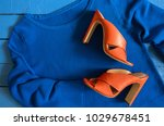 womens clothing  footwear  blue ... | Shutterstock . vector #1029678451