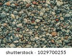 beach rounded pebbles close up. ...   Shutterstock . vector #1029700255