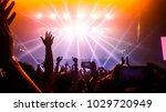 happy people dance in nightclub ... | Shutterstock . vector #1029720949