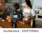 female vlogger recording... | Shutterstock . vector #1029729601
