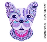 Colorful French Bulldog With...