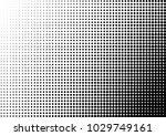 halftone background. gradient...   Shutterstock .eps vector #1029749161