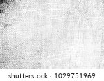 abstract background. monochrome ... | Shutterstock . vector #1029751969