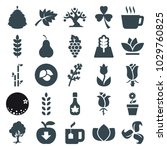 leaf icons. set of 25 editable...