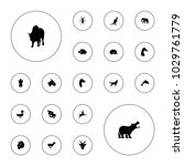 editable vector wild icons ... | Shutterstock .eps vector #1029761779