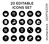 lunch icons. set of 20 editable ... | Shutterstock .eps vector #1029765259