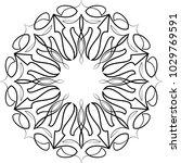 pinstripe design circular vinyl ... | Shutterstock .eps vector #1029769591