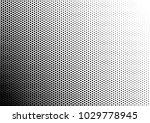 black and white halftone...   Shutterstock .eps vector #1029778945