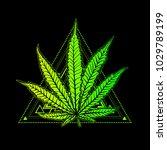 cannabis leaf  marijuana  herb  ...   Shutterstock .eps vector #1029789199