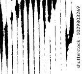 grunge halftone black and white ... | Shutterstock . vector #1029803269