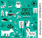 set of hand drawn forest... | Shutterstock .eps vector #1029806491