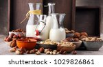 alternative types of milks.... | Shutterstock . vector #1029826861