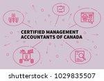 business illustration showing... | Shutterstock . vector #1029835507