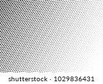 halftone background. gradient...   Shutterstock .eps vector #1029836431