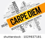 carpe diem word cloud collage ... | Shutterstock .eps vector #1029837181