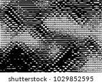 black and white grunge dust...   Shutterstock .eps vector #1029852595