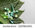science research leaves of... | Shutterstock . vector #1029861001