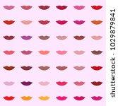 shades of lipstick for women...   Shutterstock .eps vector #1029879841