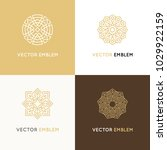 vector set of logo design... | Shutterstock .eps vector #1029922159