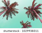 pink palm trees silhouettes... | Shutterstock . vector #1029938311