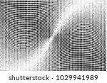 grunge halftone dots pattern...   Shutterstock .eps vector #1029941989