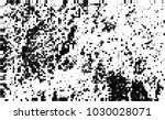 black and white halftone....   Shutterstock .eps vector #1030028071