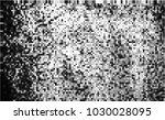 black and white halftone....   Shutterstock .eps vector #1030028095