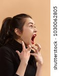 screaming  hate  rage. crying... | Shutterstock . vector #1030062805