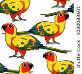 seamless pattern  sun parakeet... | Shutterstock .eps vector #1030083601
