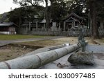 dragon for purifying ritual at... | Shutterstock . vector #1030097485
