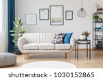floral pillow on beige sofa... | Shutterstock . vector #1030152865