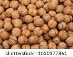natural brown walnuts. | Shutterstock . vector #1030177861