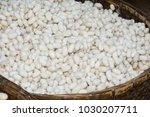 white silk cocoons in rattan... | Shutterstock . vector #1030207711