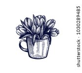 tulip hand drawn isolated... | Shutterstock .eps vector #1030289485