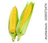 corn on the cob kernels close... | Shutterstock . vector #1030372474