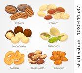 nuts and seeds  beans and... | Shutterstock .eps vector #1030414537
