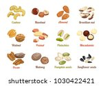 set of named vector icons nuts... | Shutterstock .eps vector #1030422421