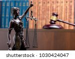 legal law concept   open law... | Shutterstock . vector #1030424047
