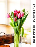 a bouquet of blooming tulips. | Shutterstock . vector #1030456465