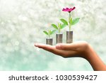 plant coins saving growth up to ... | Shutterstock . vector #1030539427